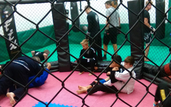 Brazilian Jiu Jitsu and Kick Boxing